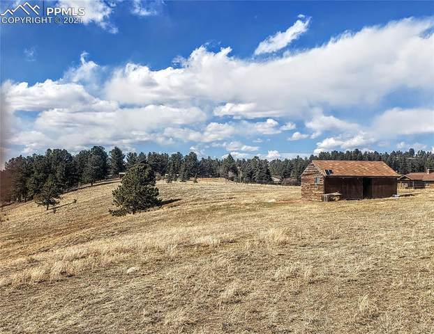 99 Uintah Ridge Drive, Florissant, CO 80816 (#4371799) :: Tommy Daly Home Team