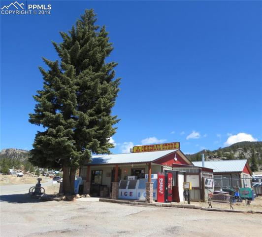 5790 County 92 Road, Lake George, CO 80827 (#4372067) :: 8z Real Estate