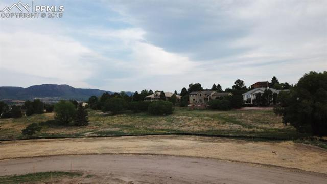 14344 Spyglass Hill Place, Colorado Springs, CO 80921 (#4393769) :: Fisk Team, RE/MAX Properties, Inc.