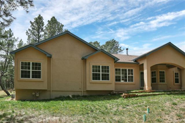 10825 Hardy Road, Colorado Springs, CO 80908 (#4454549) :: Jason Daniels & Associates at RE/MAX Millennium