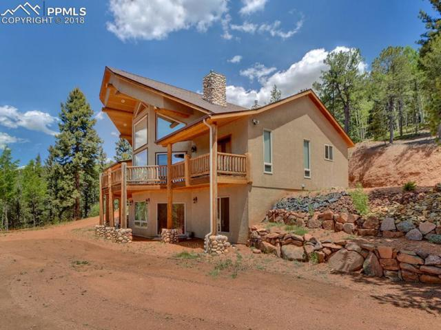 15047 S Highway 67 Highway, Divide, CO 80814 (#4455671) :: Action Team Realty