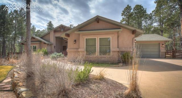 11575 Milford Road, Black Forest, CO 80106 (#4461087) :: Action Team Realty