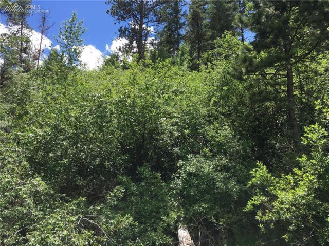 9665 Fountain Road, Cascade, CO 80809 (#4482458) :: 8z Real Estate
