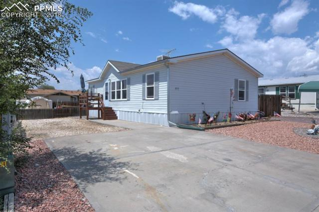807 Robbie Lane, Canon City, CO 81212 (#4504263) :: Colorado Home Finder Realty