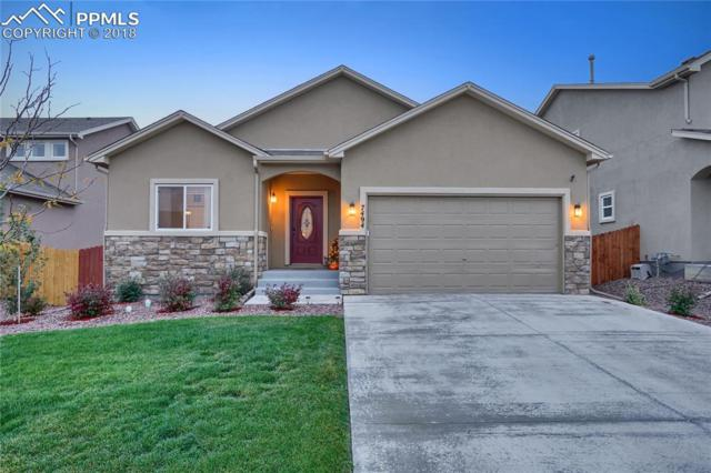 7494 Dutch Loop, Colorado Springs, CO 80925 (#4532320) :: The Treasure Davis Team
