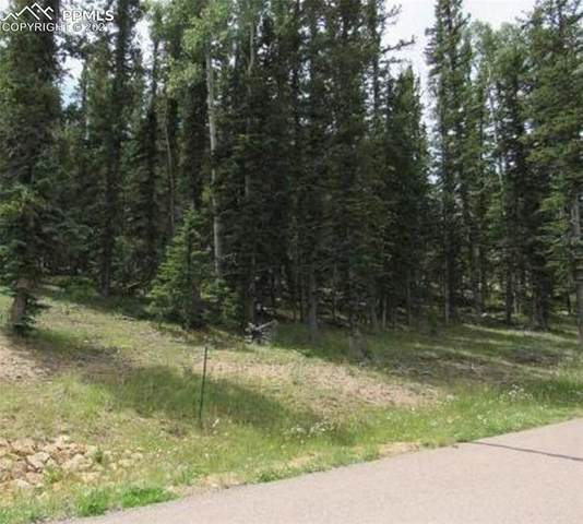 402 Silvermoon Heights, Divide, CO 80814 (#4535021) :: Venterra Real Estate LLC