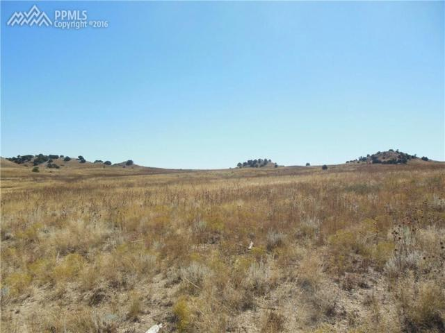 Lot 107 Horse Creek Road, Colorado City, CO 81019 (#4541095) :: Jason Daniels & Associates at RE/MAX Millennium