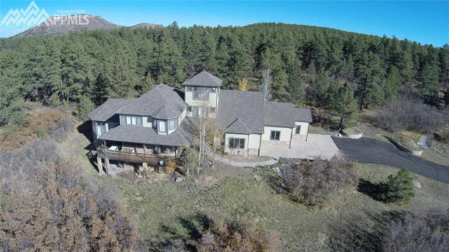 1947-1821 Elk View Road, Larkspur, CO 80118 (#4546194) :: Jason Daniels & Associates at RE/MAX Millennium