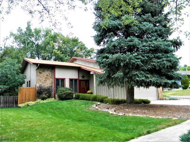 2924 Nevermind Lane, Colorado Springs, CO 80917 (#4562460) :: 8z Real Estate