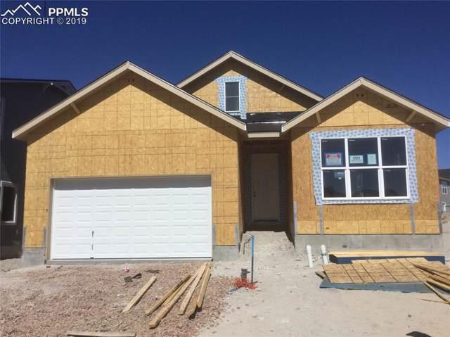 4564 Captain Jack Lane, Colorado Springs, CO 80924 (#4570850) :: 8z Real Estate