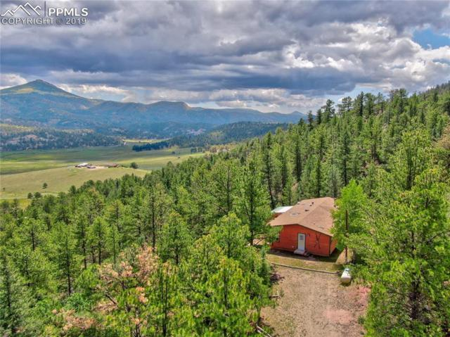 764 Navajo Drive, Florissant, CO 80816 (#4572743) :: Tommy Daly Home Team