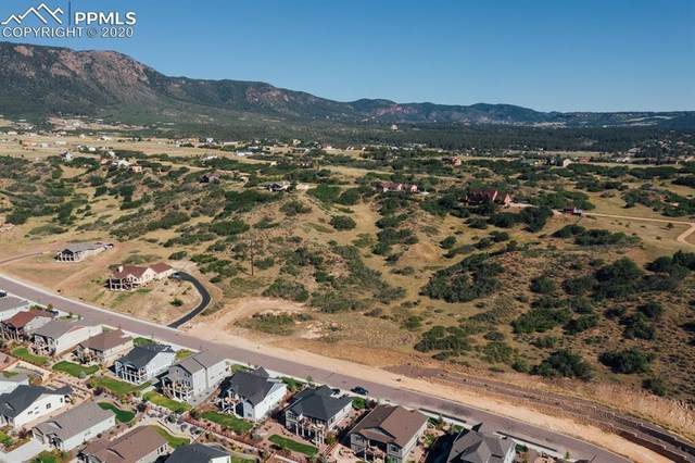 2974 Lakefront Drive, Monument, CO 80132 (#4608399) :: The Kibler Group