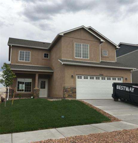 7934 Martinwood Place, Colorado Springs, CO 80908 (#4616493) :: Fisk Team, RE/MAX Properties, Inc.