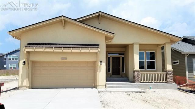 4218 Notch Trail, Colorado Springs, CO 80924 (#4621364) :: The Hunstiger Team
