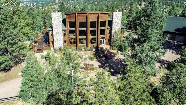 242 Simba Point, Divide, CO 80814 (#4645684) :: Tommy Daly Home Team