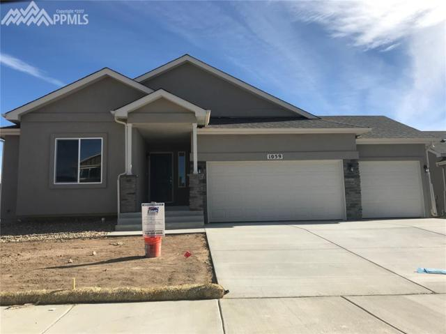 1059 Night Blue Circle, Monument, CO 80132 (#4663324) :: 8z Real Estate