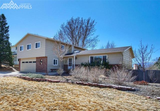 2625 Townpark Drive, Colorado Springs, CO 80920 (#4672704) :: 8z Real Estate