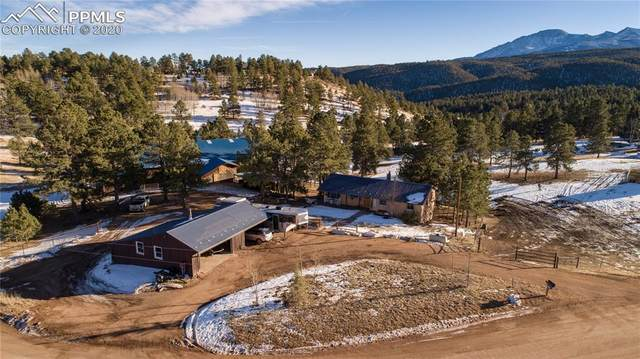 72 Broken Wagon Road, Woodland Park, CO 80863 (#4677216) :: The Dixon Group