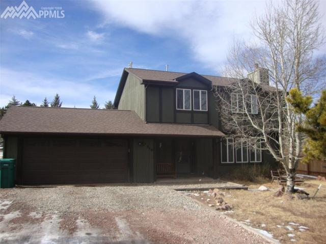 848 E Northwoods Drive, Woodland Park, CO 80863 (#4699282) :: Colorado Home Finder Realty