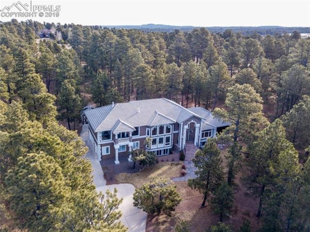 17075 Viscount Court, Monument, CO 80132 (#4702677) :: Perfect Properties powered by HomeTrackR