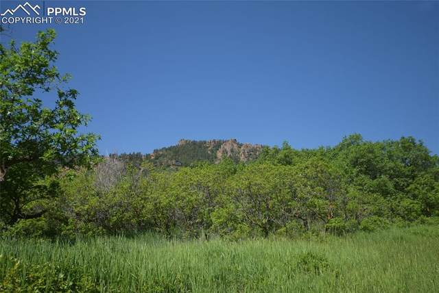 284 Crystal Park Road, Manitou Springs, CO 80829 (#4703558) :: Fisk Team, eXp Realty