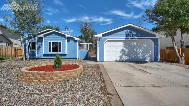 6820 Cory Place, Colorado Springs, CO 80915 (#4709483) :: 8z Real Estate