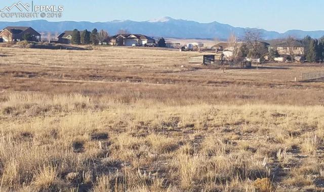 466 S Laporte Drive, Pueblo West, CO 81007 (#4716593) :: Tommy Daly Home Team