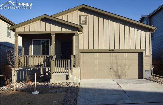 3460 Swabuck Place, Castle Rock, CO 80109 (#4733919) :: Action Team Realty