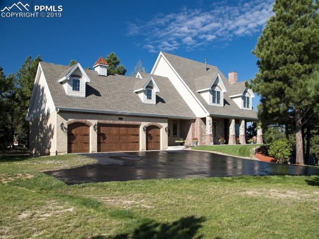 771 Long Timber Lane, Monument, CO 80132 (#4740330) :: Tommy Daly Home Team