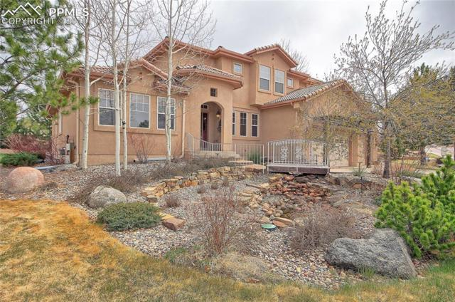 629 Saber Creek Drive, Monument, CO 80132 (#4783648) :: The Kibler Group