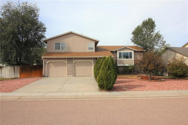 610 Jayton Drive, Colorado Springs, CO 80911 (#4784772) :: Venterra Real Estate LLC