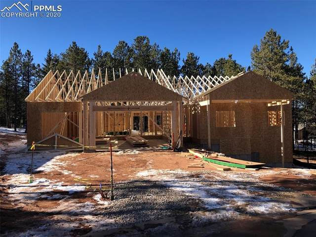 1390 Millstone Lane, Woodland Park, CO 80863 (#4793600) :: Venterra Real Estate LLC