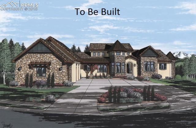 6969 Yampa Drive, Larkspur, CO 80118 (#4807850) :: 8z Real Estate