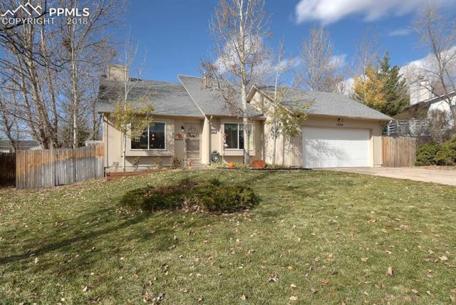 7840 Chimney Terrace, Colorado Springs, CO 80920 (#4811740) :: The Kibler Group