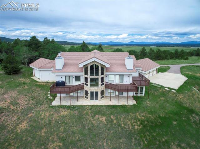 4755 Elk Valley Road, Divide, CO 80814 (#4868210) :: 8z Real Estate