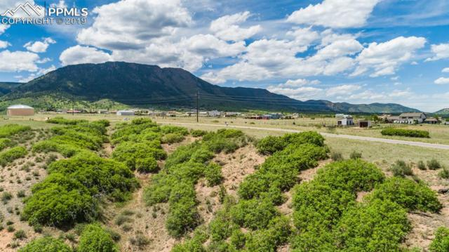 3655 Mesa Top Drive, Monument, CO 80132 (#4896231) :: Tommy Daly Home Team
