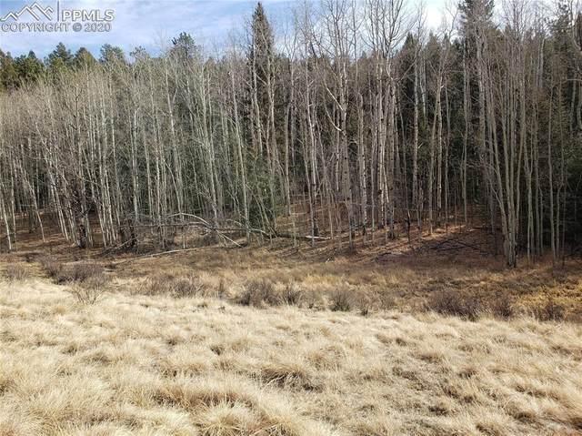344 Grey Eagle Drive, Cripple Creek, CO 80813 (#4898692) :: The Treasure Davis Team