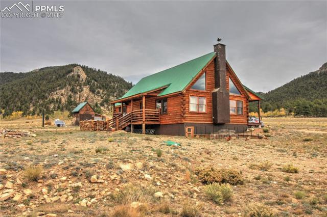 7623 Park Road, Hartsel, CO 80449 (#4908152) :: Jason Daniels & Associates at RE/MAX Millennium