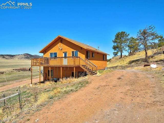99 Peak Drive, Guffey, CO 80820 (#4910328) :: CC Signature Group