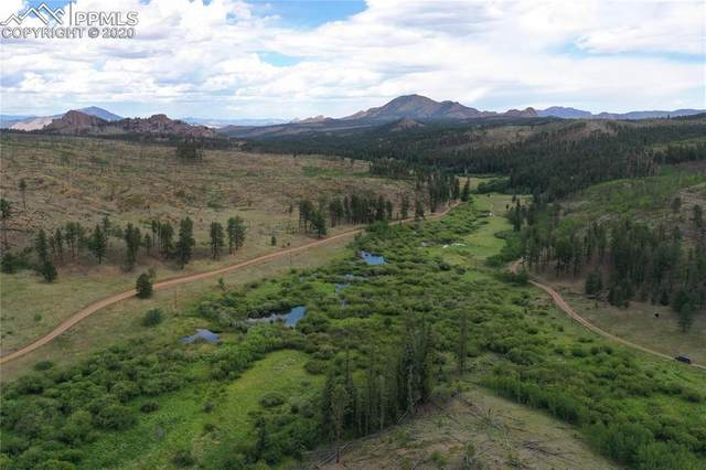 4907 County Road 33, Woodland Park, CO 80866 (#4948527) :: Tommy Daly Home Team