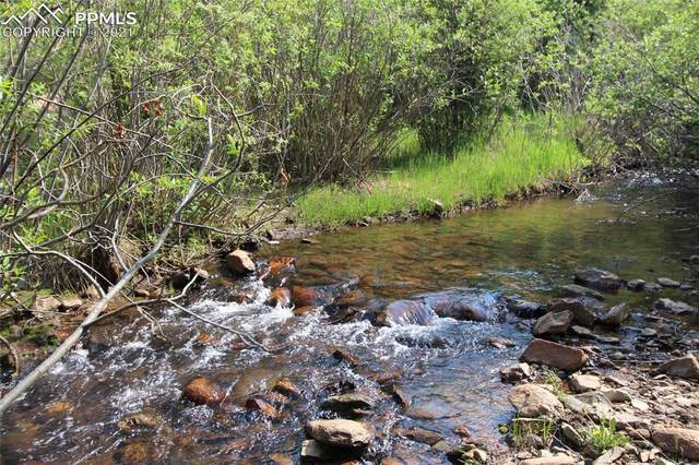 000 Beaver Valley Road, Victor, CO 80860 (#4951255) :: Action Team Realty
