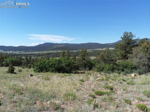 285 Rosebush Road, Canon City, CO 81212 (#4963289) :: 8z Real Estate