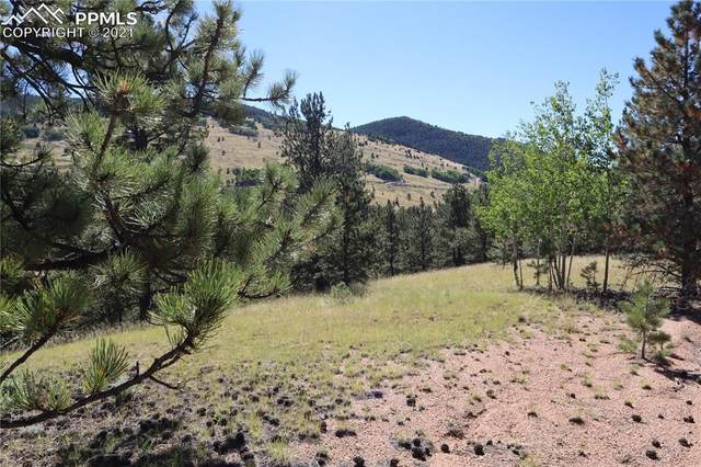 78 Red Cloud Circle, Cripple Creek, CO 80813 (#4972148) :: Tommy Daly Home Team