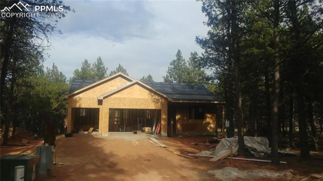 1339 Firestone Drive, Woodland Park, CO 80863 (#4994138) :: Jason Daniels & Associates at RE/MAX Millennium