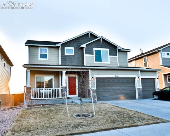 7590 Bigtooth Maple Drive, Colorado Springs, CO 80925 (#5040396) :: Fisk Team, RE/MAX Properties, Inc.