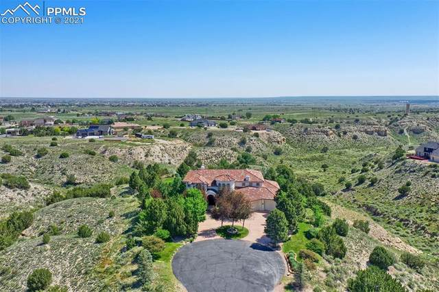 1221 S Skyline Court, Pueblo West, CO 81007 (#5050415) :: The Gold Medal Team with RE/MAX Properties, Inc