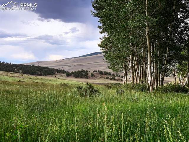 West Highway 9 Highway, Guffey, CO 80820 (#5050768) :: Finch & Gable Real Estate Co.