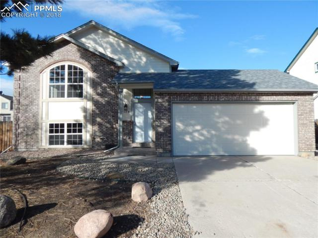7349 Liberty Bell Drive, Colorado Springs, CO 80920 (#5051172) :: The Peak Properties Group
