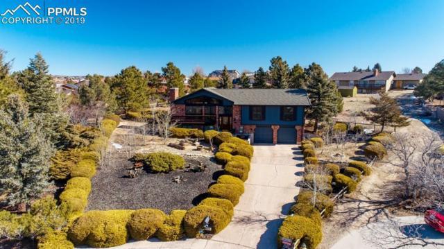 4175 Sourdough Place, Colorado Springs, CO 80917 (#5056583) :: Colorado Home Finder Realty