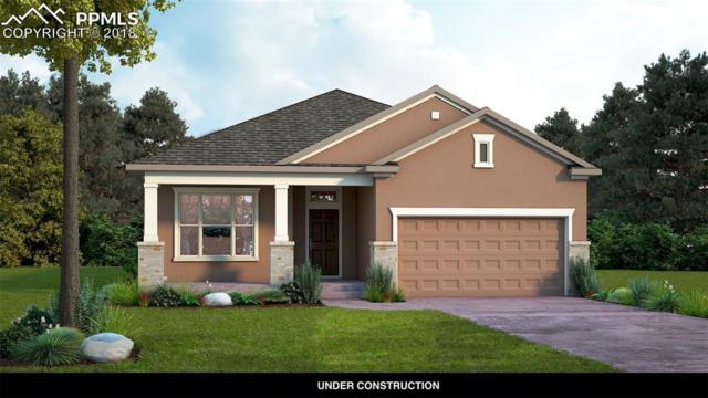 6369 Rowdy Drive, Colorado Springs, CO 80924 (#5065175) :: The Kibler Group